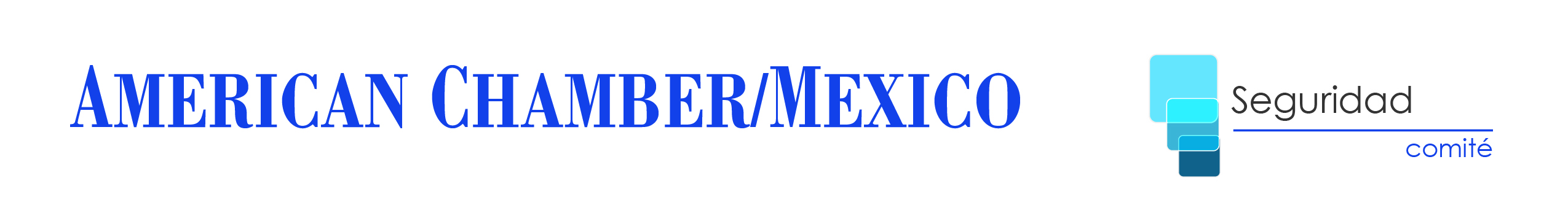 CDMX - Comité de Seguridad