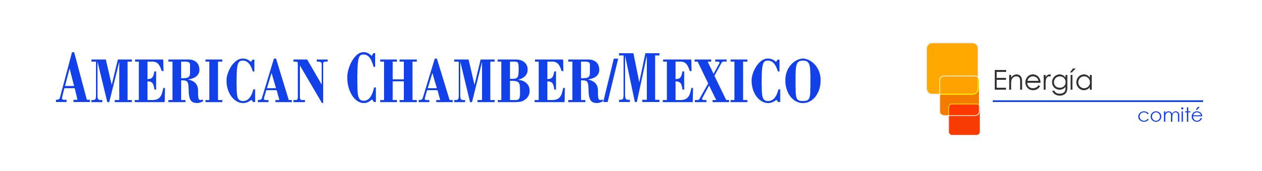 CDMX - Panorama electoral en México y el escenario para el sector energético