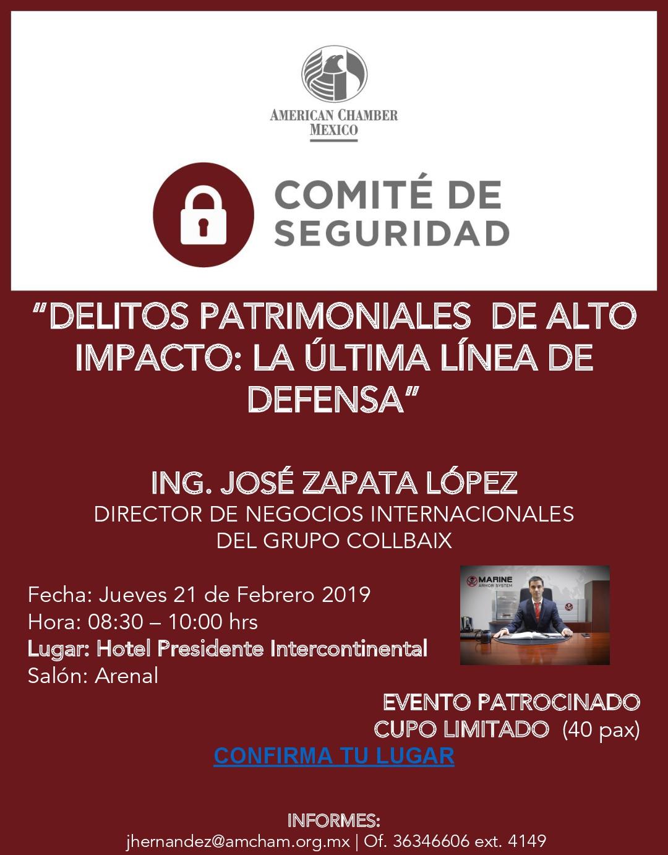 GDL - COMITÉ DE SEGURIDAD - Febrero 21, 2019