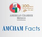 Acerca de AmCham