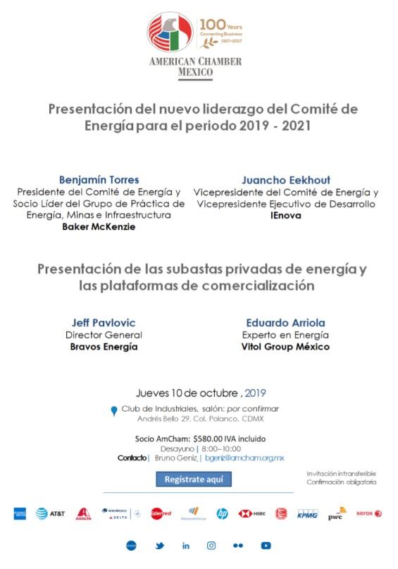 Subastas privadas de energía y las plataformas de comercialización