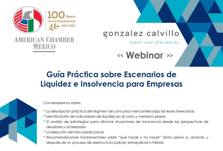 Guía Práctica sobre Escenarios de Liquidez e Insolvencia para Empresas