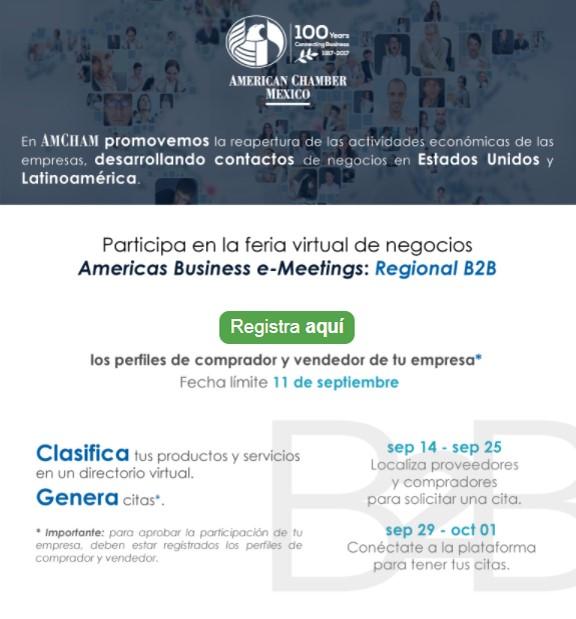 B2B DAY - Americas Business e-Meetings: Regional B2B