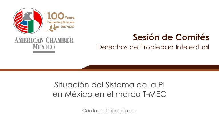 Situación del Sistema de la PI en México en el marco T-MEC